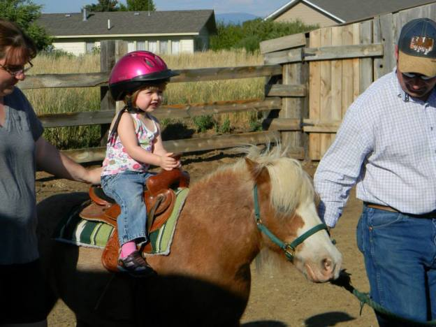HAND-LED PONY RIDES - A privately scheduled hand-led pony or horseback ride. Ride, pet the pony, & give treats. Includes tour of the farm & viewing of other farm animals.