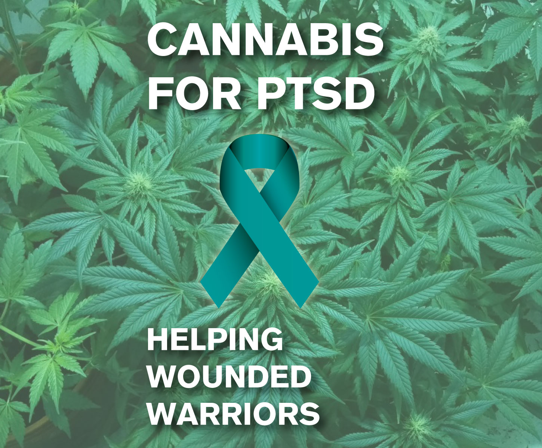 PTSD Blog Image.jpg