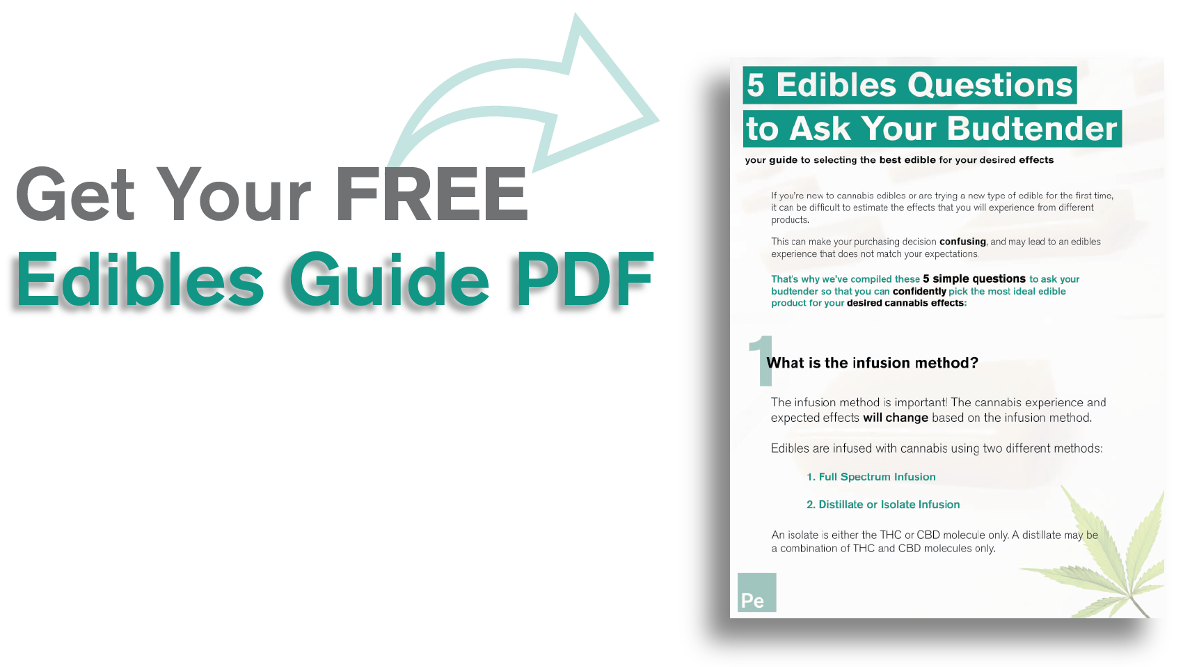 Edible Questions Guide Hotlink Image-01.png