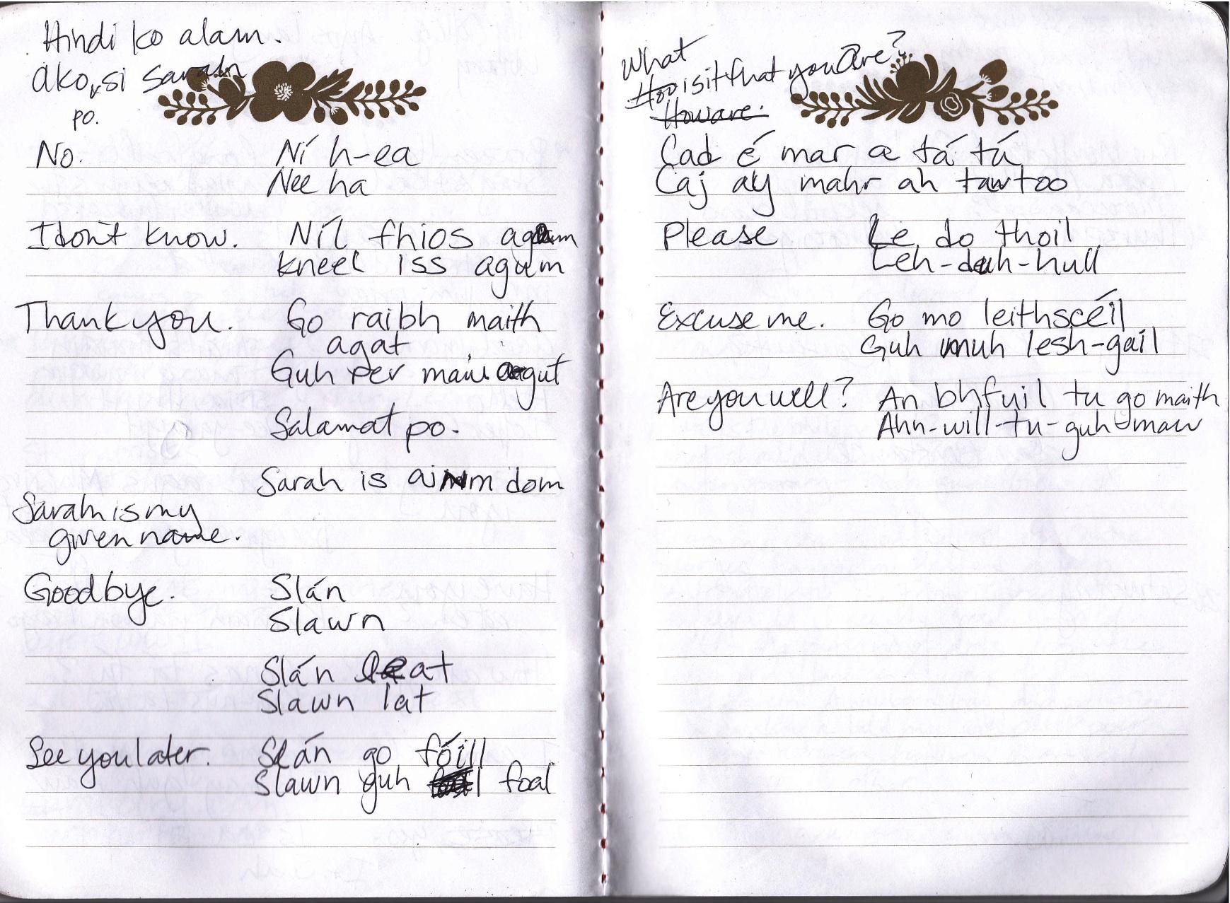 notebook-gaelic.jpg