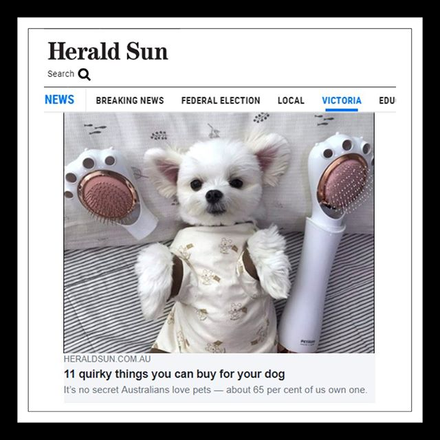 "Our famous Pet Grooming Dryer got featured in the HERALD SUN newspaper🗞️️ (2.5.19)! Who read the article✍ ""11 quirky things you can buy your dog"" in @ Herald Sun published a few weeks ago?  For those who missed it, checkout the full article on our Facebook page - pett'd - ⠀ ⠀⠀⠀⠀ Now we want to hear your thoughts ~ How do you dry your pets after bath-time?  Our mission is to make life easier for pets & their parents through practical, innovative & safe products. BLOW-DRY IN STYLE 😉. www.pettd.com.au . . . . . #doglovers #lovemypupper #dogs #newspaper #Heraldsun #dogmum #doglife #love #lovemydog #pet #grooming #bathtime #funtime #puppylove #melbourne #victoria"