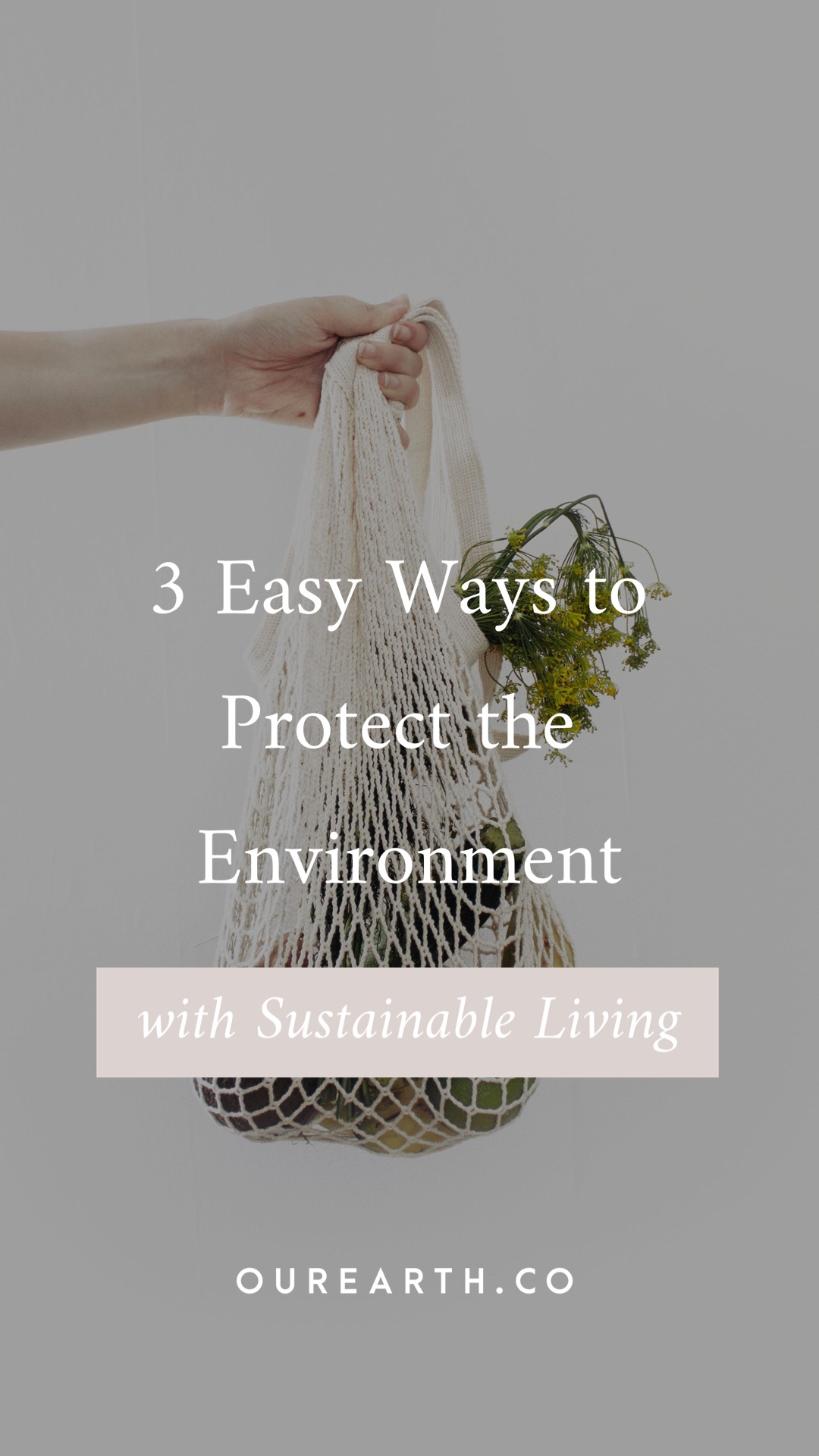 3 Easy Ways to Protect the Environment with Sustainable Living