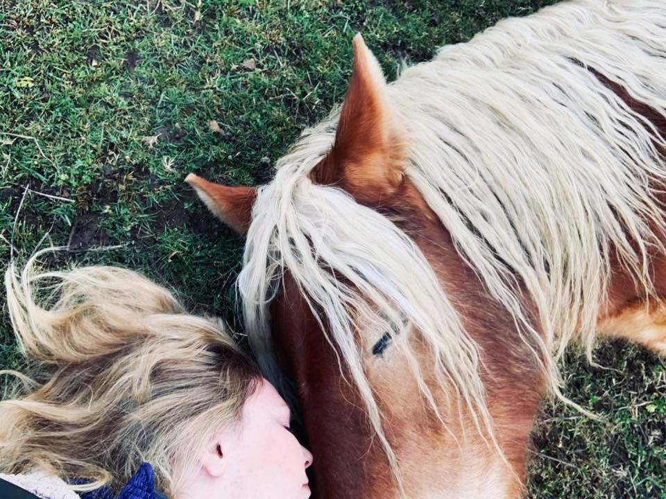 Mentala Möten - Vill du fördjupa och förbättra kommunikationen mellan dig och din häst? Vilka hinder och barriärer skapas av vårt mänskliga sinne, och hur kan vi sudda ut dessa och skapa fri väg för ett djupare möte?