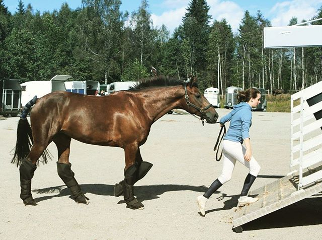 """PRESS OCH JÄMFÖRELSER  Låt oss låtsas att du kommer till stallet en eftermiddag. Medan du stiger ur bilen ser du en stallkompis stå och lastträna sin häst. Du slås av tanken på att det där borde du också göra så att det går smidigare vid lastningen av din egen pålle. När du sen kommer in i stallet ser du en annan stallkompis i färd med att duscha sin häst, varpå du inser att det var sjukt länge sedan du gjorde detsamma. Fler och fler mentala noteringar görs i ditt huvud i takt med att du ser en person putsa utrustning, någon annan löshoppa, en tredje göra ett riktigt uppbyggande arbete vid hand-pass. När du lämnar stallet den dagen gör du det med en tung känsla av dåligt samvete över dig. Du borde ju också ta dig tid till de där sakerna!  Känner du igen dig?  Det orättvisa med det här sättet att tänka är att det som du har lagt märke till hos de olika personerna sannolikt är allt de gör den dagen. Personen som lasttränade varken löshoppade eller duschade sin häst. Den som putsade sin utrustning kanske inte också gjorde det där galet seriösa arbete vid hand-passet och hen hann definitivt inte också med att bygga en löshoppningsbana!  Samma tänk kan gå igång när vi scrollar genom sociala medier och ser bilder av uteritter, intervallpass och träningar för kända instruktörer. Vi borde ju också göra allt det där…  Nästa gång det dåliga samvetet kommer krypandes – försök att komma ihåg att det du ser att andra gör är vad just den personen gör. Att lägga ihop vad 10 olika personer gör och tycka att du är otillräcklig som inte matchar totalen av det är ganska orättvist mot dig själv, eller hur? När du kommer på dig själv med att tänka såhär, försök att kärleksfullt tala dig själv till rätta och gör ditt bästa för att skaka av dig det dåliga samvetet.  Om det inte går, kan en idé vara att göra total revolt mot det dåliga samvetet och göra ingenting alls den dagen. Att """"bara vara"""" med sin häst är en aktivitet som oftast uppskattas djupt av hästen och som samtidigt fyller på e"""
