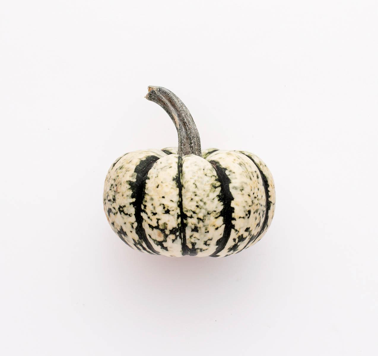 pyo-pumpkin-kent-pick-your-own-pumpkin-green-and-white-support-local-magazine.JPG
