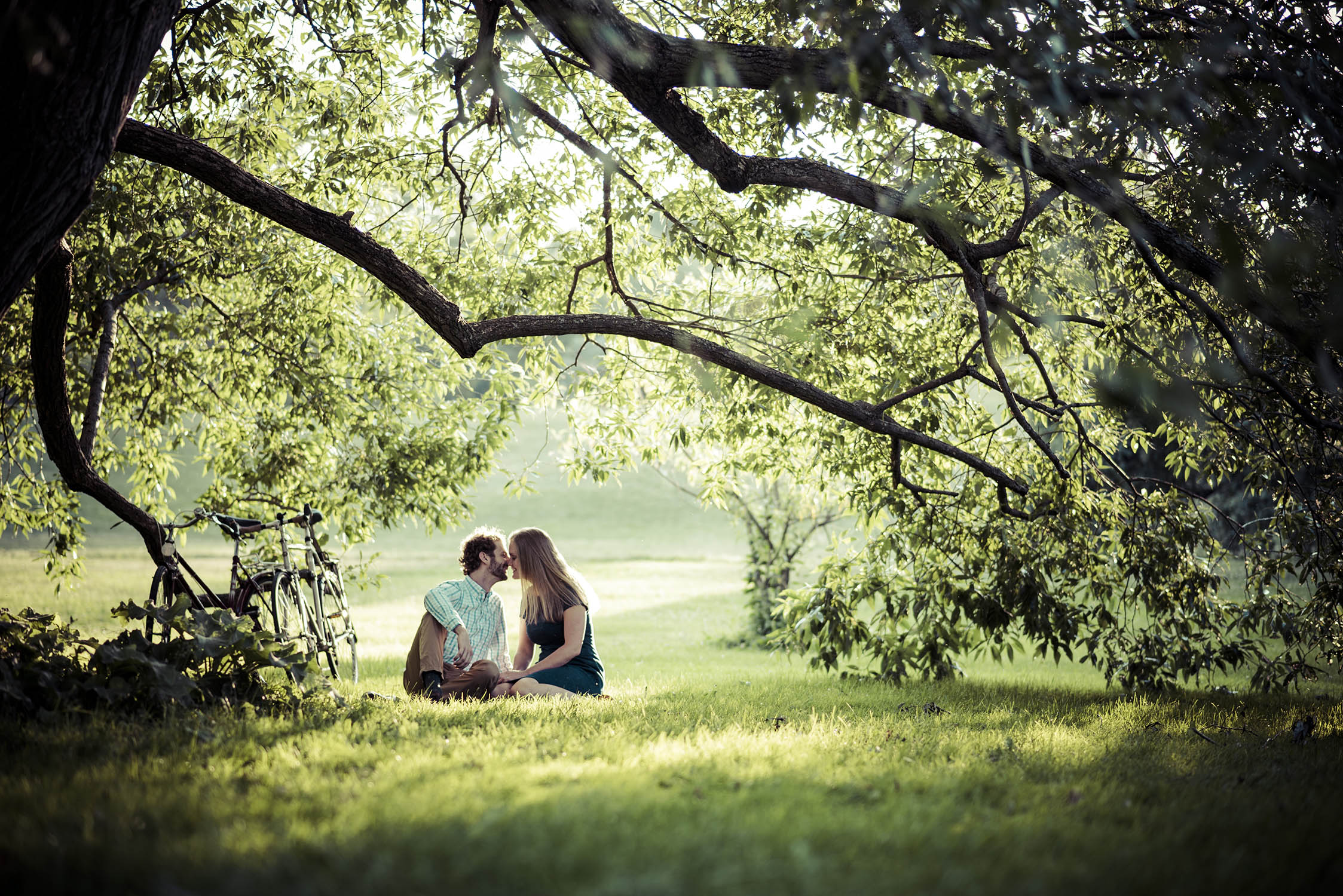 arboretum-engagement-photography.jpg