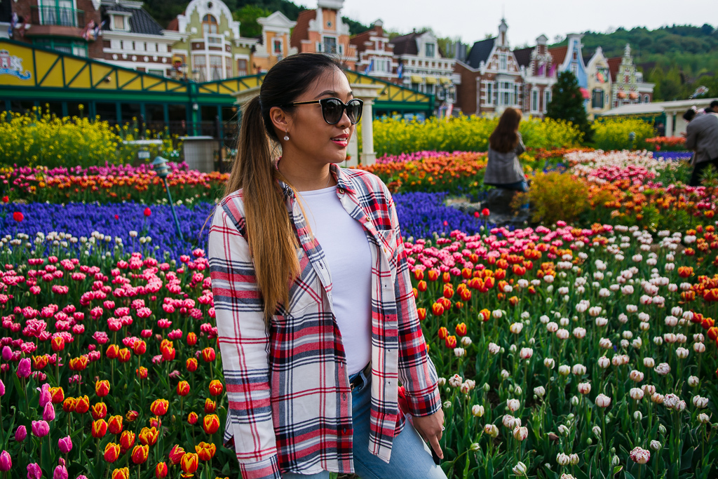 Tulips at Everland