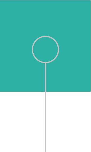 DVS-turquoise