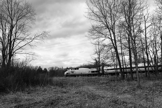 I don't love this photo, but this is just to say LO AND BEHOLD, five minutes after I took the photos on the tracks I did catch the Amtrak zooming by.