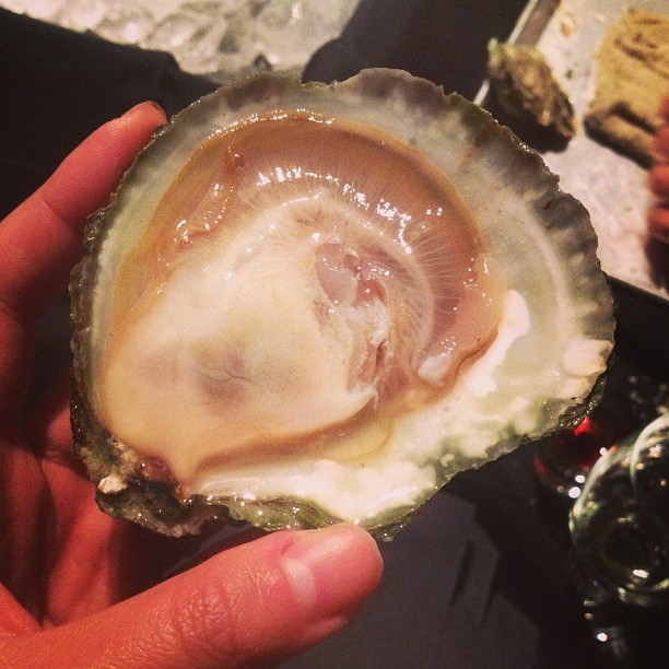 #10 A beautiful Maine belon from Shuckeasy during Oyster Week.