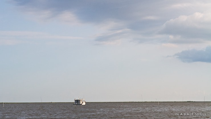 IAHS-2015-07-10-Gulf-Oyster-Tour-IMG_4180.jpg