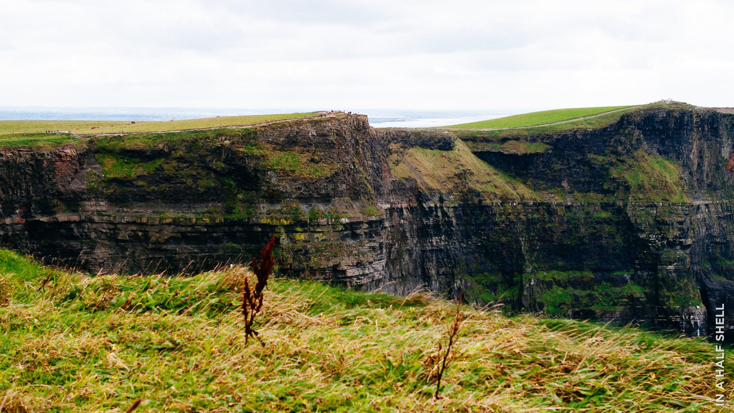 InAHalfShell-2013-IrelandOysterTour-10.jpg