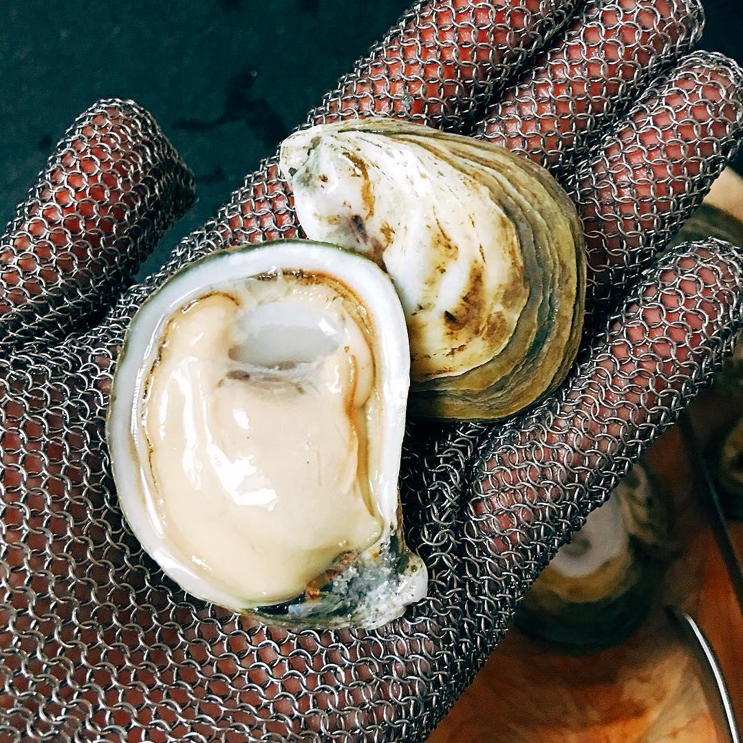 InAHalfShell-OysterStandards-Virginica5.jpg