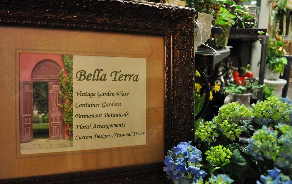 Bella Terra Studios