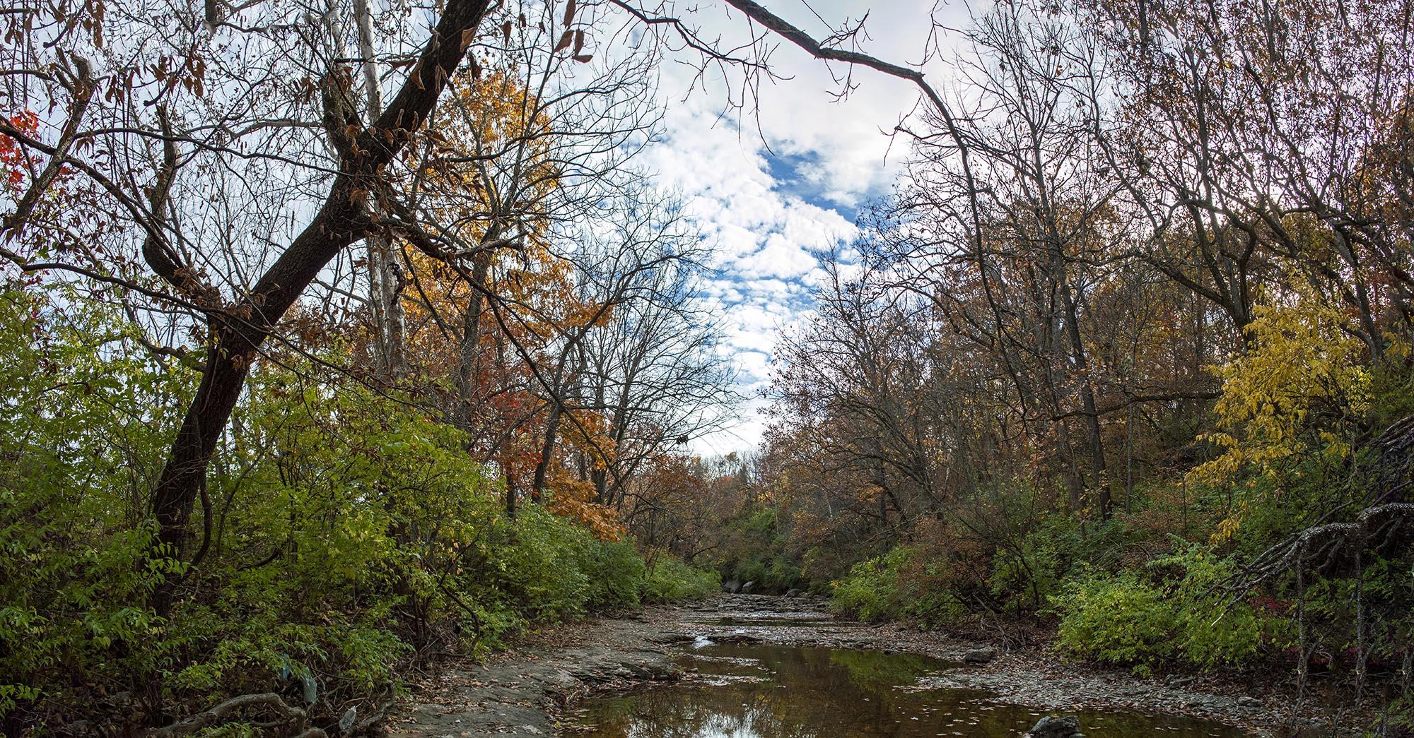 Upstream Pano.jpg