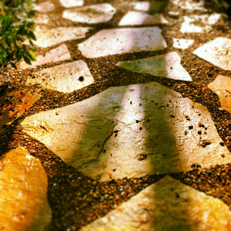 pavers-cody's shadow.JPG