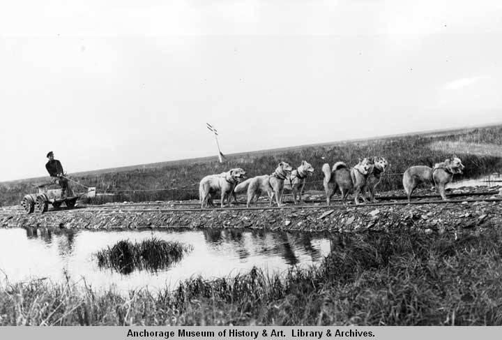 Alaska. Nome. Pupmobile - biological survey tram. aug 23 1924.jpg