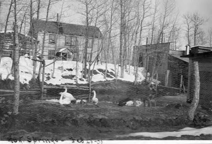 Hot springs area with large house, outbuildings and duck pond, Seward Peninsula, February 28, 1908.jpg