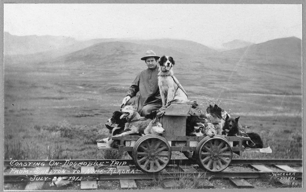 Man and dogs on rail cart trip from Shelton to Nome.jpg