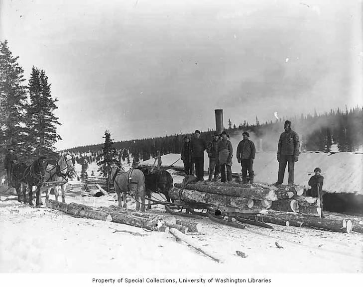 Workers, lumber and horse teams probably from the Wild Goose Mining and Trading Company's mill on Duncan Creek, 12 miles northeast of Council, Alaska, circa 1905.jpg