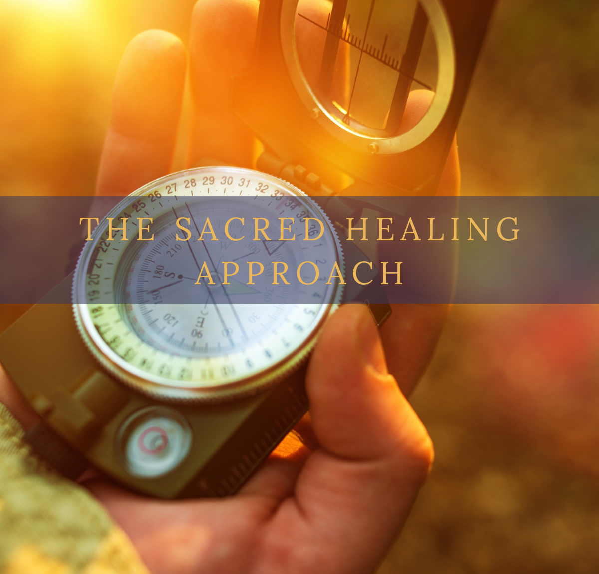 Reclaim Your Life From Illness