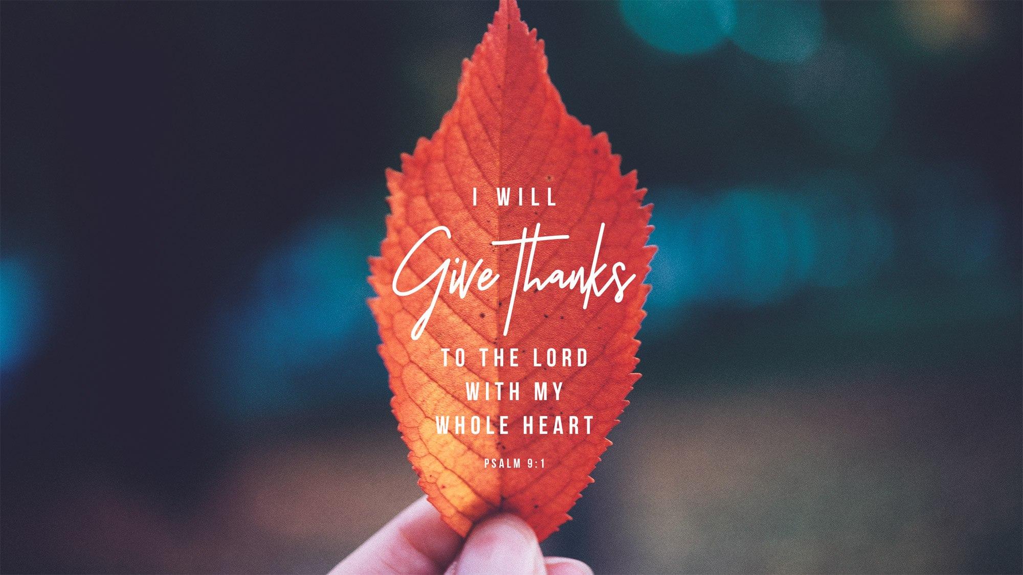 psalm 9.jpg