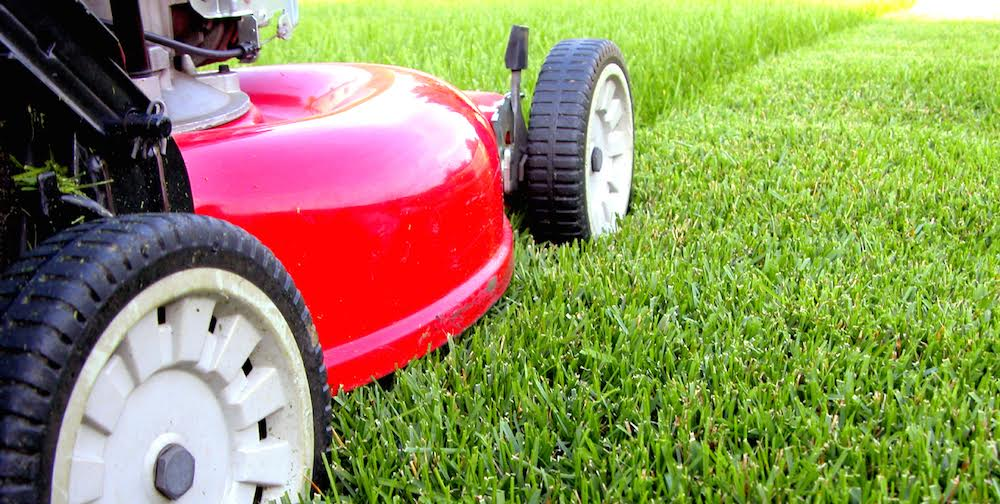 Lawn care Sign-up -