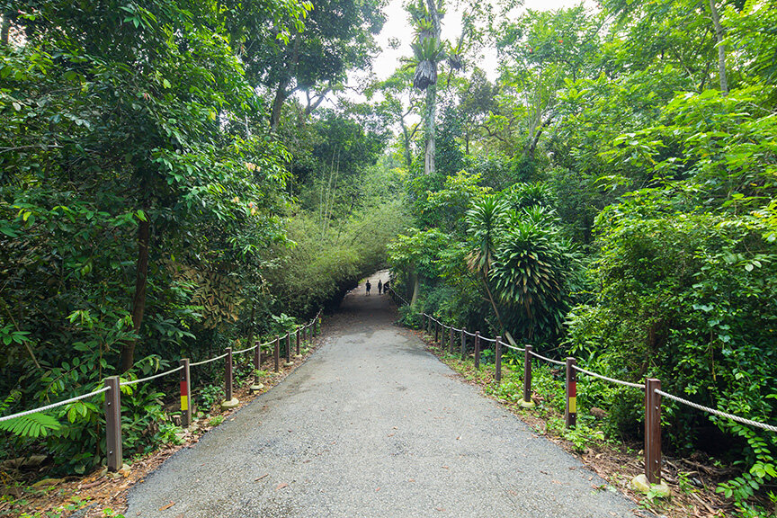 good pathway for visitors to walk better