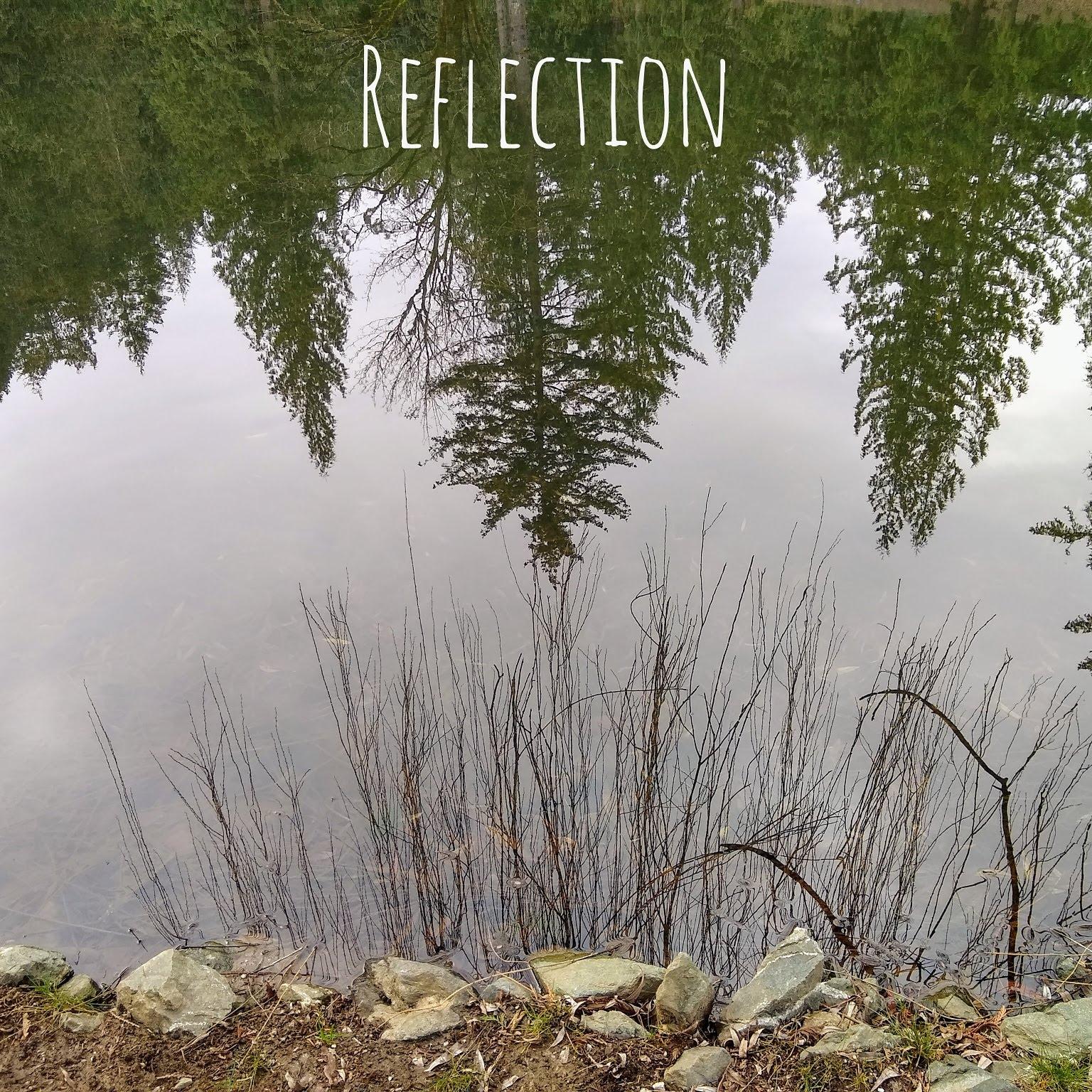 Reflection Saint Francis.jpg