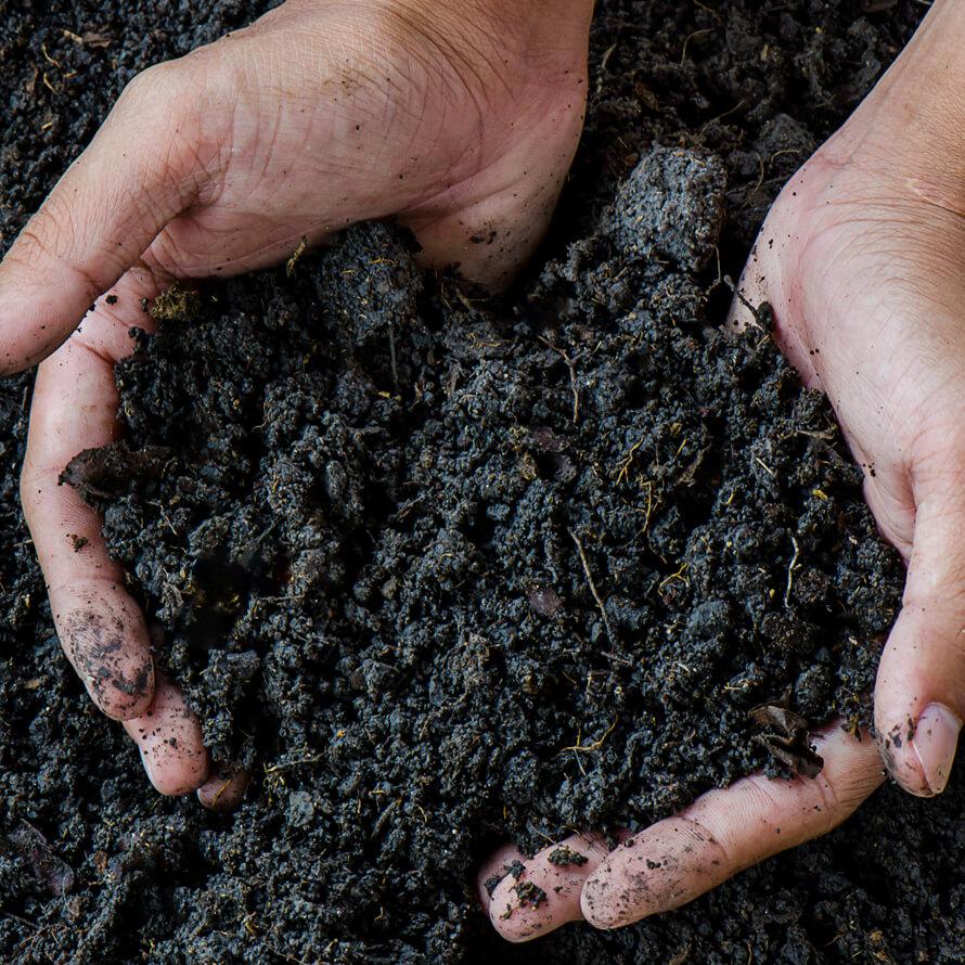 Proper Soil