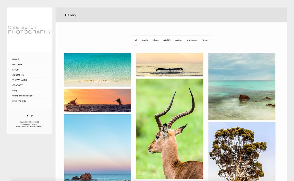 Website Design for Chris Burton Landscape & Whale Photographer