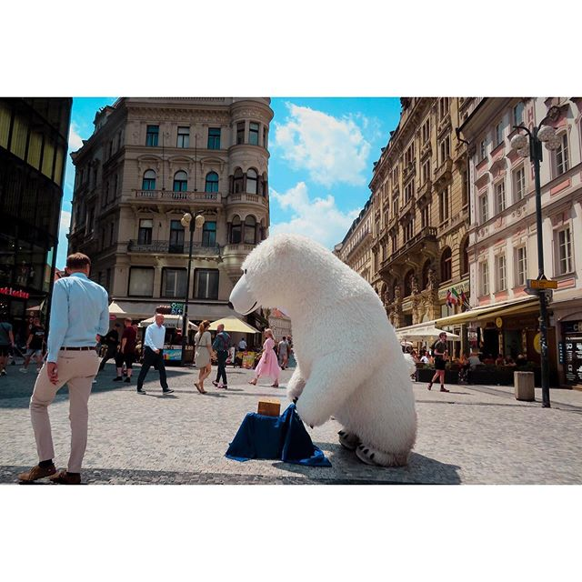 Can I let you in on one of my favorite revelations from the past couple months? Every city in the world has its own unique breed of street performers and entertainers. London Underground performers have to be selected for their gigs. I saw a guy in Central Park once racing turtles. And Prague has... these giant polar bears. What a world. -- #prague #praha #visitprague #czechrepublic #travelblogger #travelpreneur #globelletravels #traveldeeper #mytinyatlas #travelphotography #dametraveler #streetperformers
