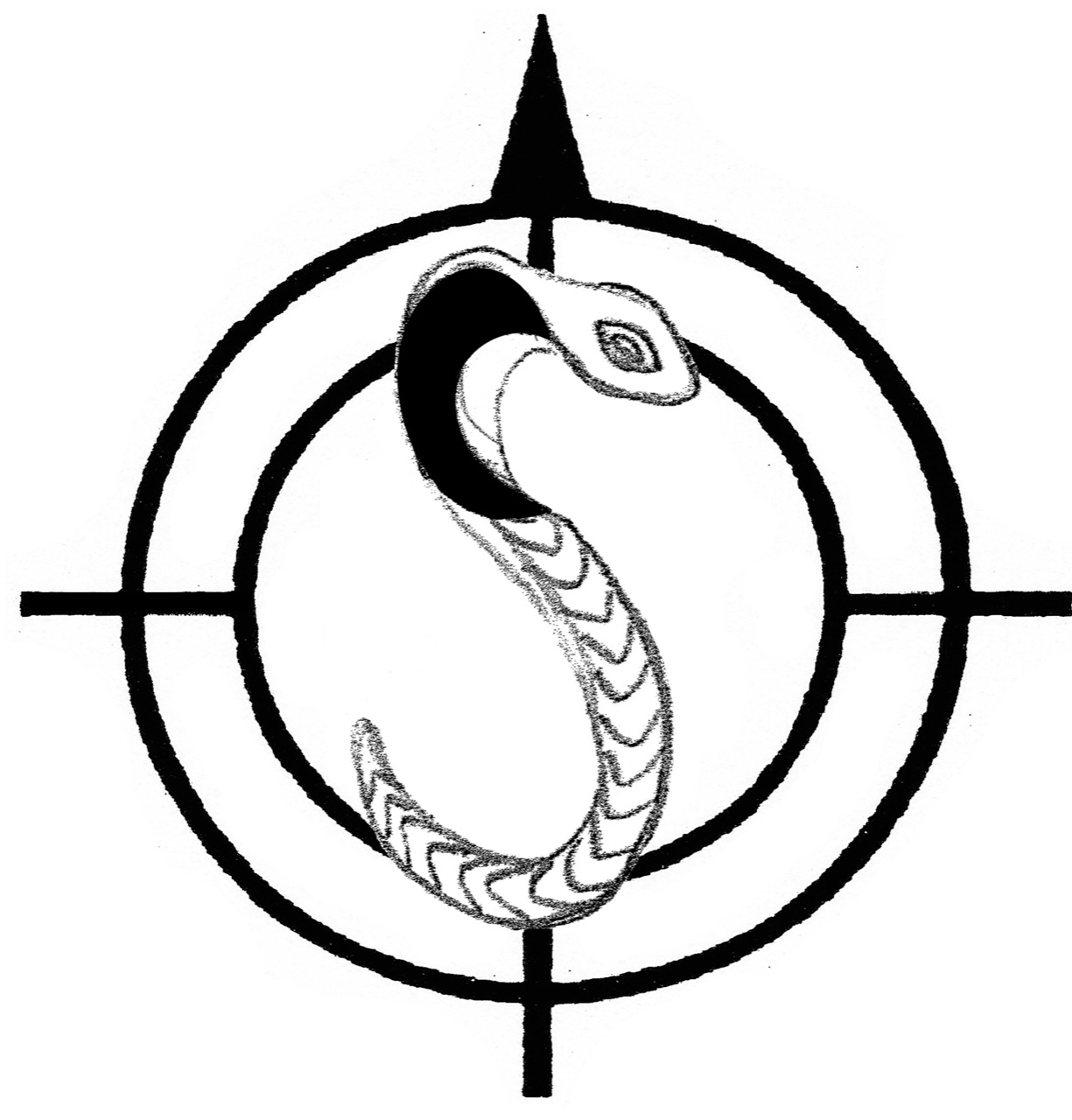 Compass_Cobra.jpg