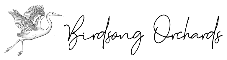 Birdosng_logo_Final_Stamp-white-text5.png