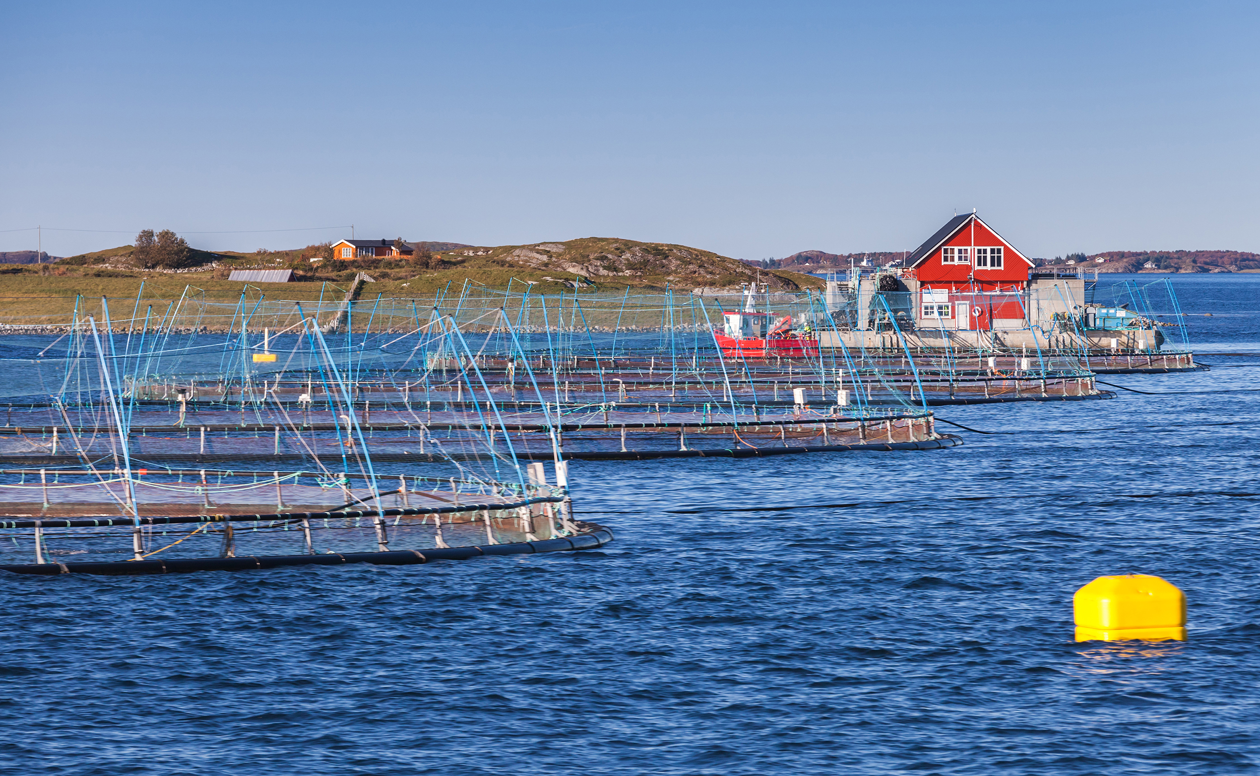 Norwegian-fish-farm-623268282_4500x2772_low.jpg