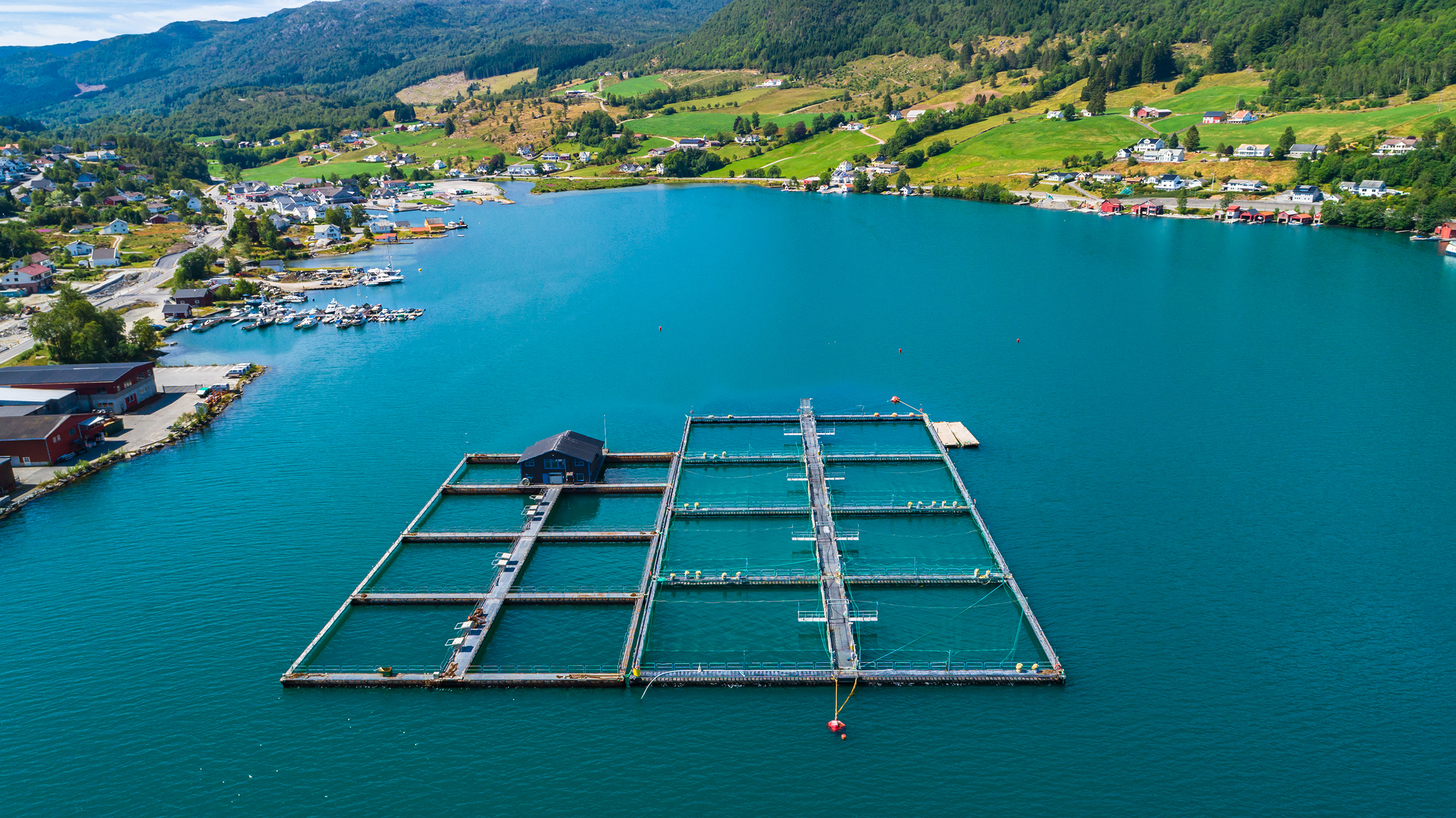 Salmon-fish-farm-in-fjord.-Olen,-Norway.-1005073636_4218x2370_low.jpg