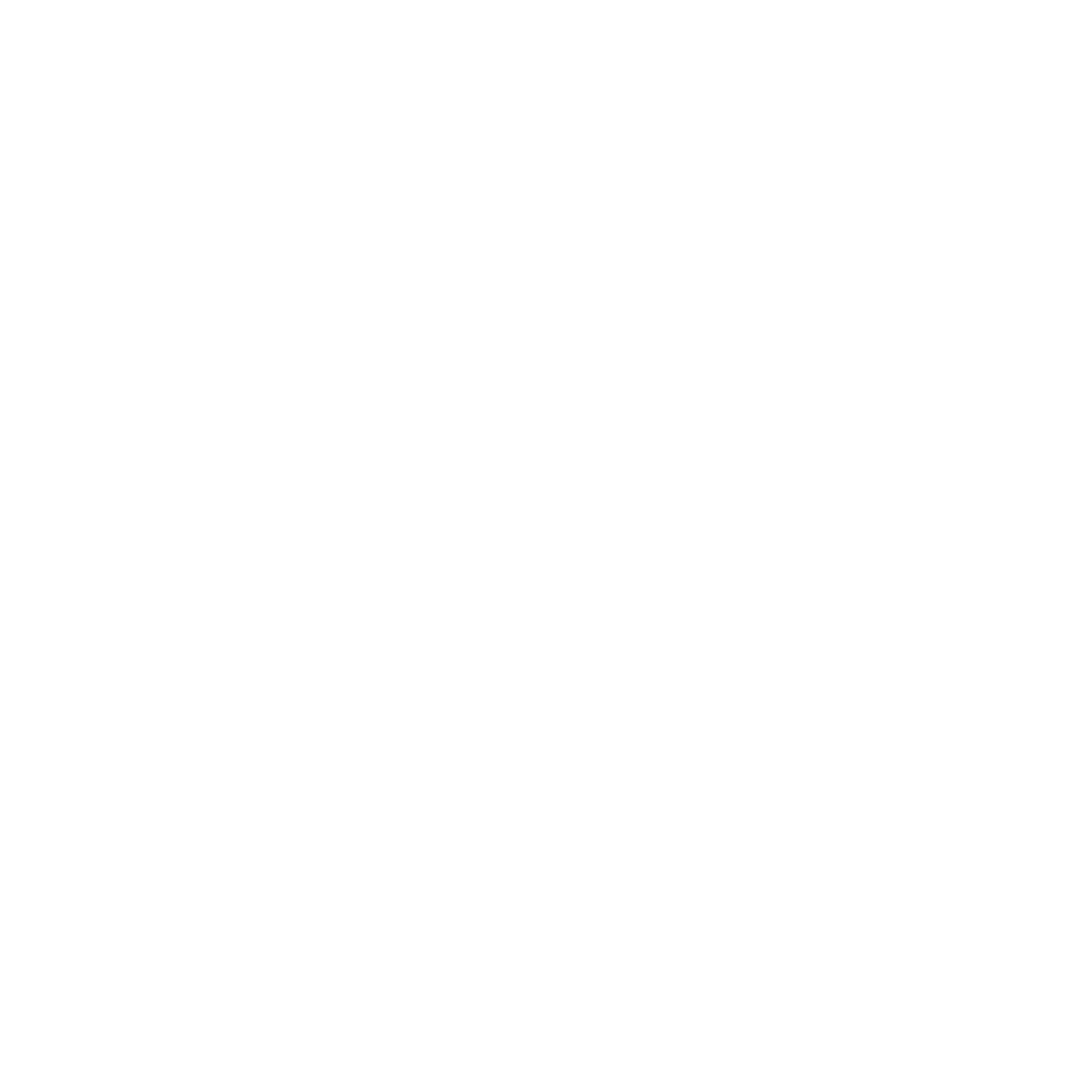 Nirvana - Brand Elements 130619-02.png