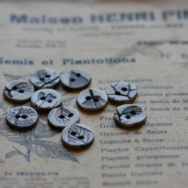 Petit réassort de rikikis herbier sépia en boutique !! 🌿🌿🌿🌿🌿🌿 #boutonsenporcelaine #boutonsenceramique #boutoncamelir #camelir #ateliercamelir #diy #tricotaddict #slowtricot #handmade #artisanat #artisanatfrancais #coutureengagée #ceramicbutton #faitmain