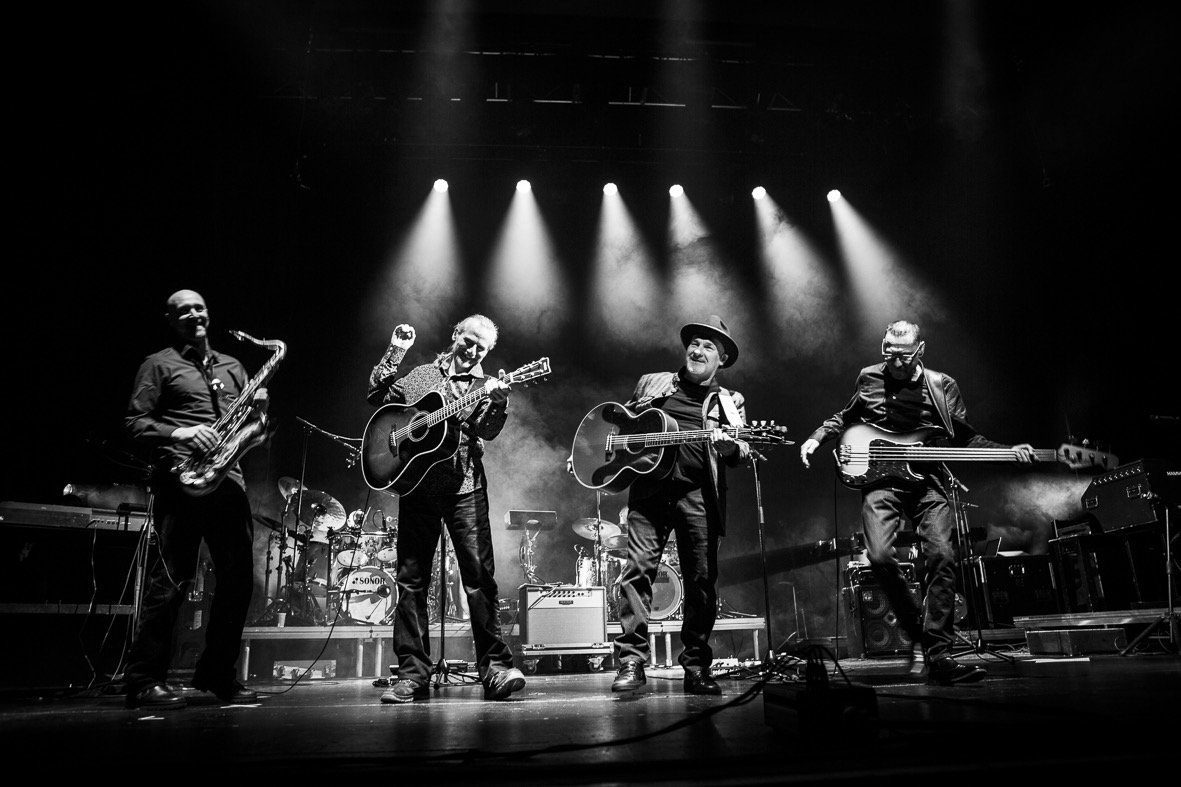 Paul Carrack & Band live