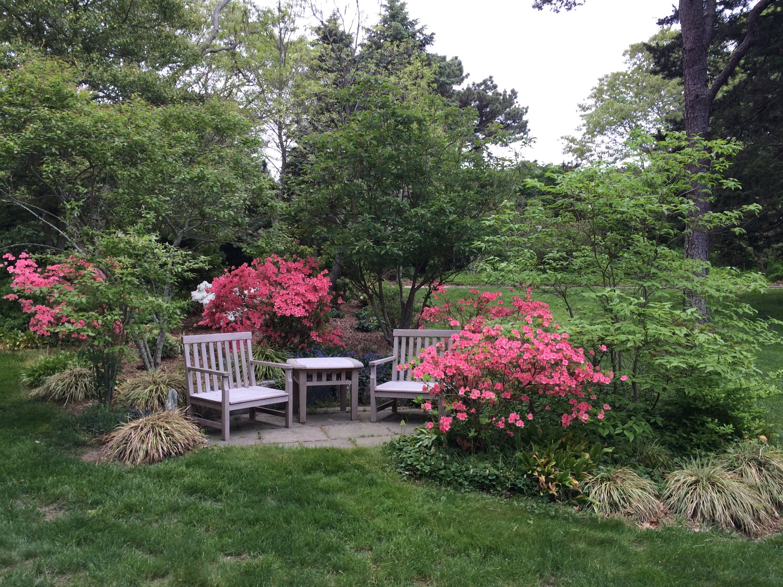 Cape Cod  - Small patio planting. Stonework by Kevin Baker Stone.