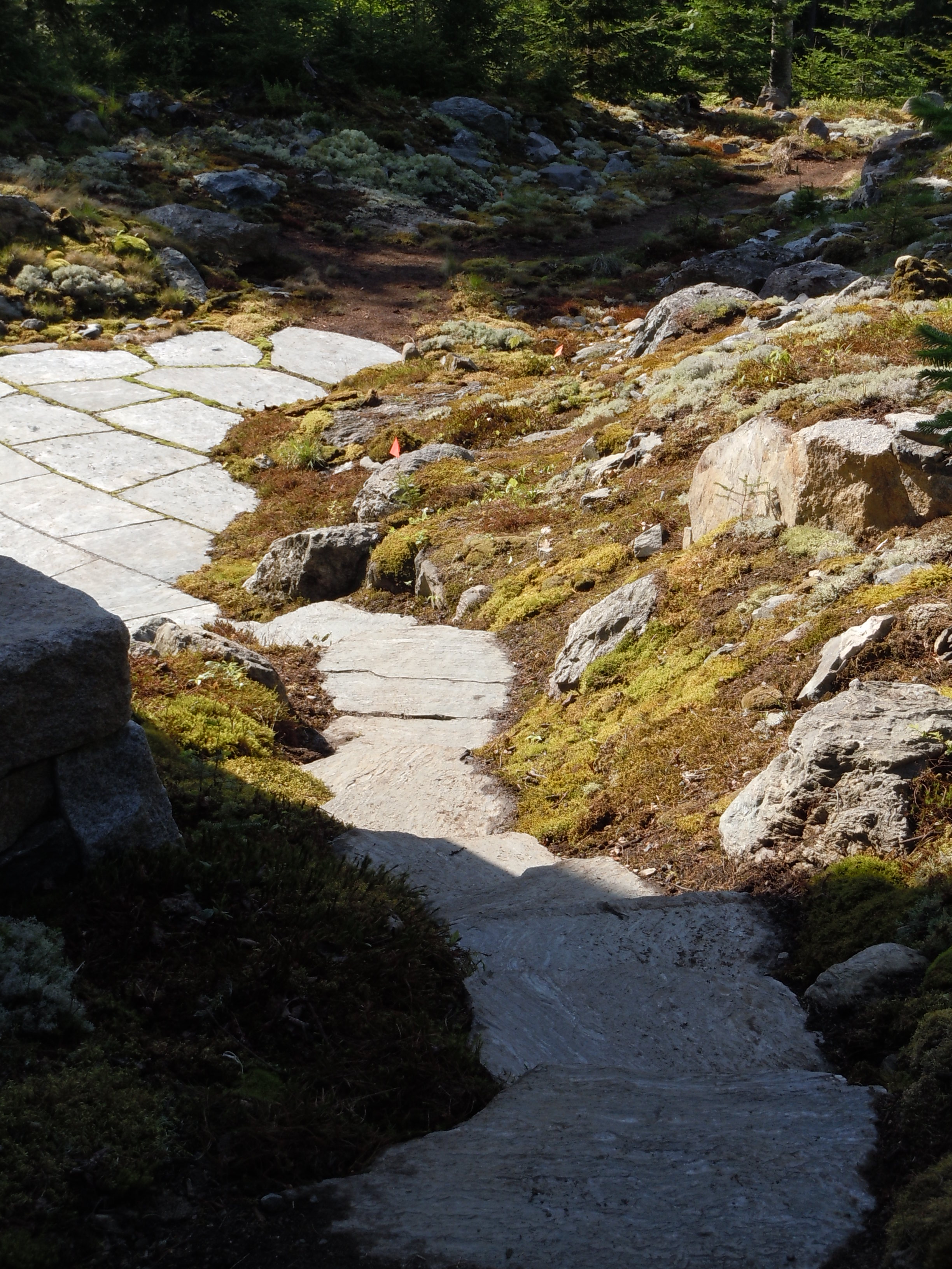 Southwest Harbor ME  - After extensive removal of ledge we were able to build this set of stairs. Prepping surrounding area to naturalize with mosses and lichens. Patio stones by Freshwater Stone. Design by Hank Gilpin and BHS.