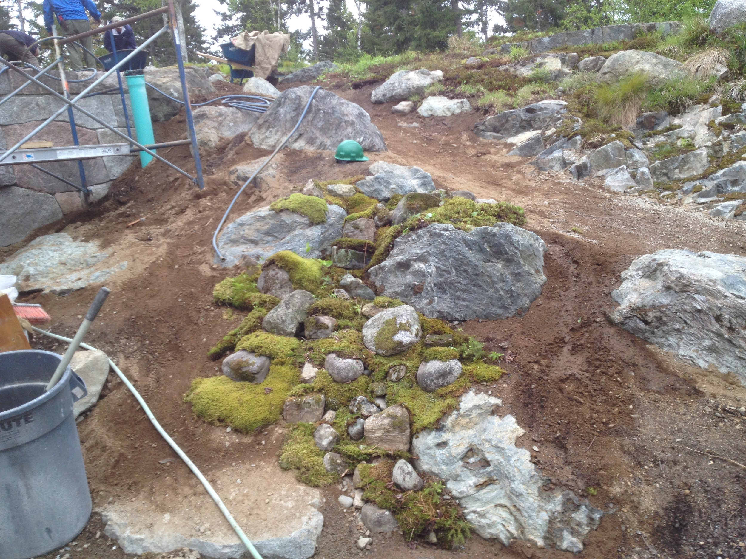 Southwest Harbor ME  - Progress picture of naturalization project. Spill way to deal with rain ruin off. Stone and moss locally sourced.