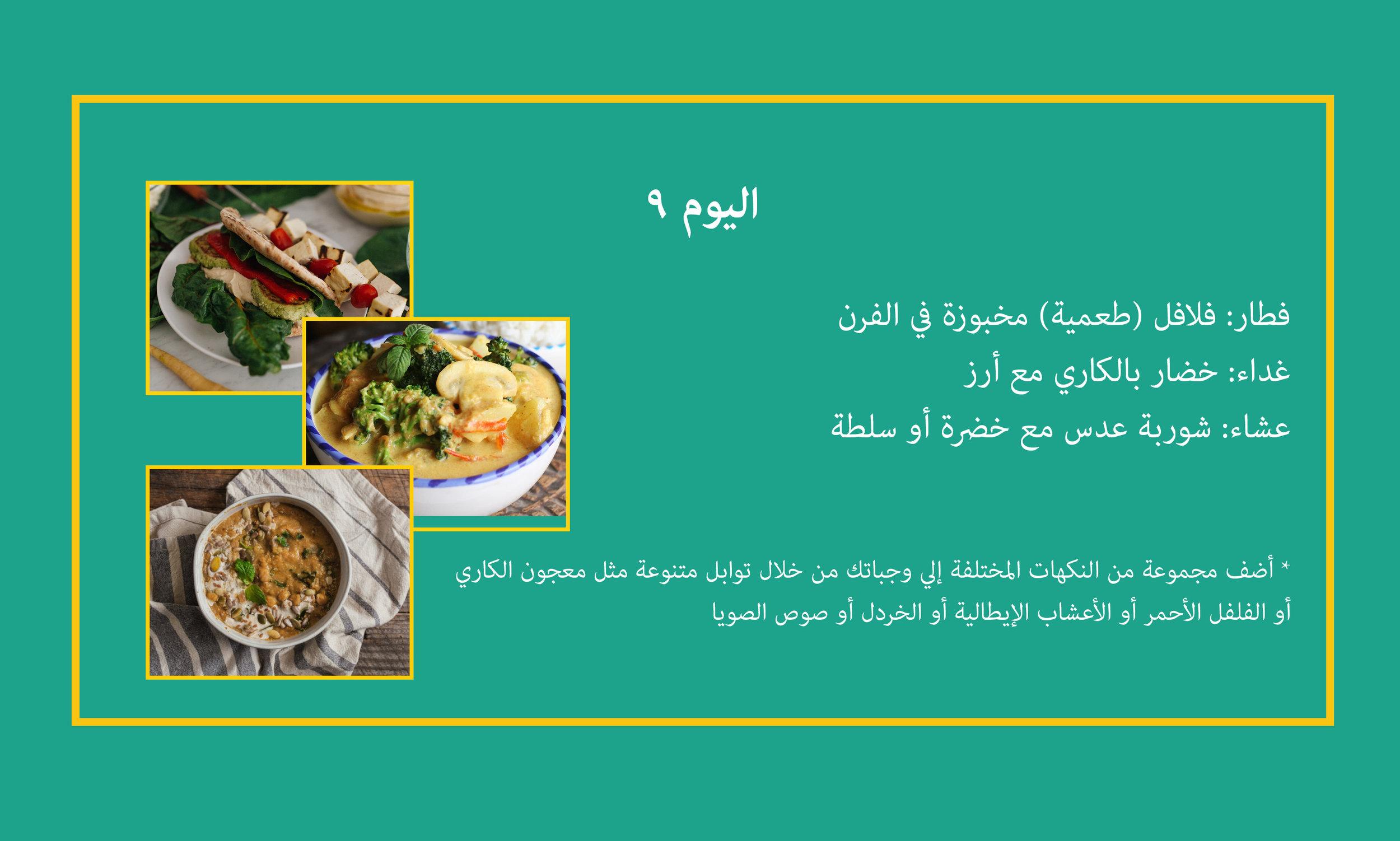 Day 9 Arabic.jpg