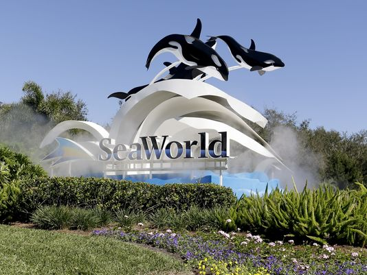 636299159035552589-AP-EARNS-SEAWORLD-ENTERTAINMENT-90770804.jpg