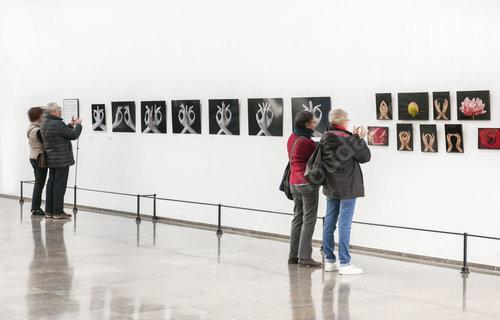 """Exposition """"Voyage au Cœur des Mains"""" ©photo Bruno Houdayer/M.D. Bleuler"""