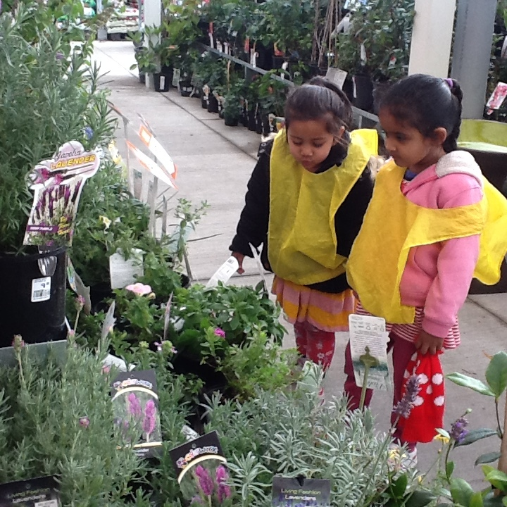 Checking out different plants at Mitre 10.
