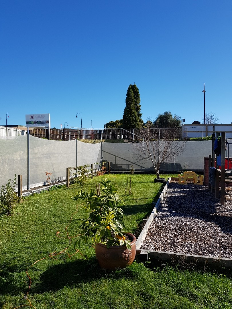 Our mini orchard is growing: grapes, passionfruit, raspberries, blackberries, boysenberries, back currents, mandarin tree, peach tree, lemon tree and three feijoa trees.