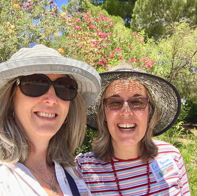 Knocking on doors in Cottonwood today, inviting community to upcoming event. #grassroots #cottonwoodaz #climatehealers