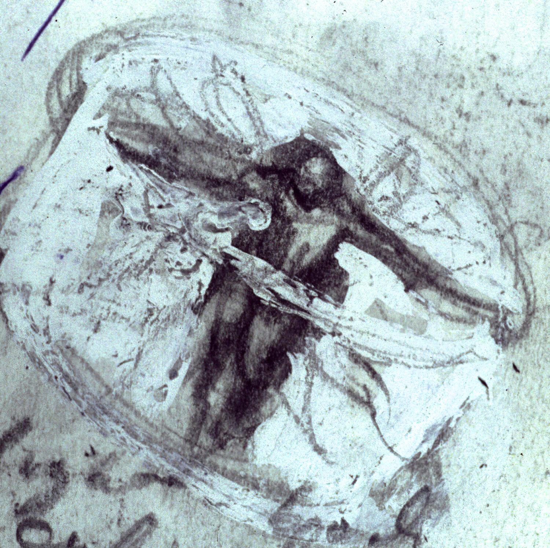 macdowell.drawing.2coloradjust-1500.jpg