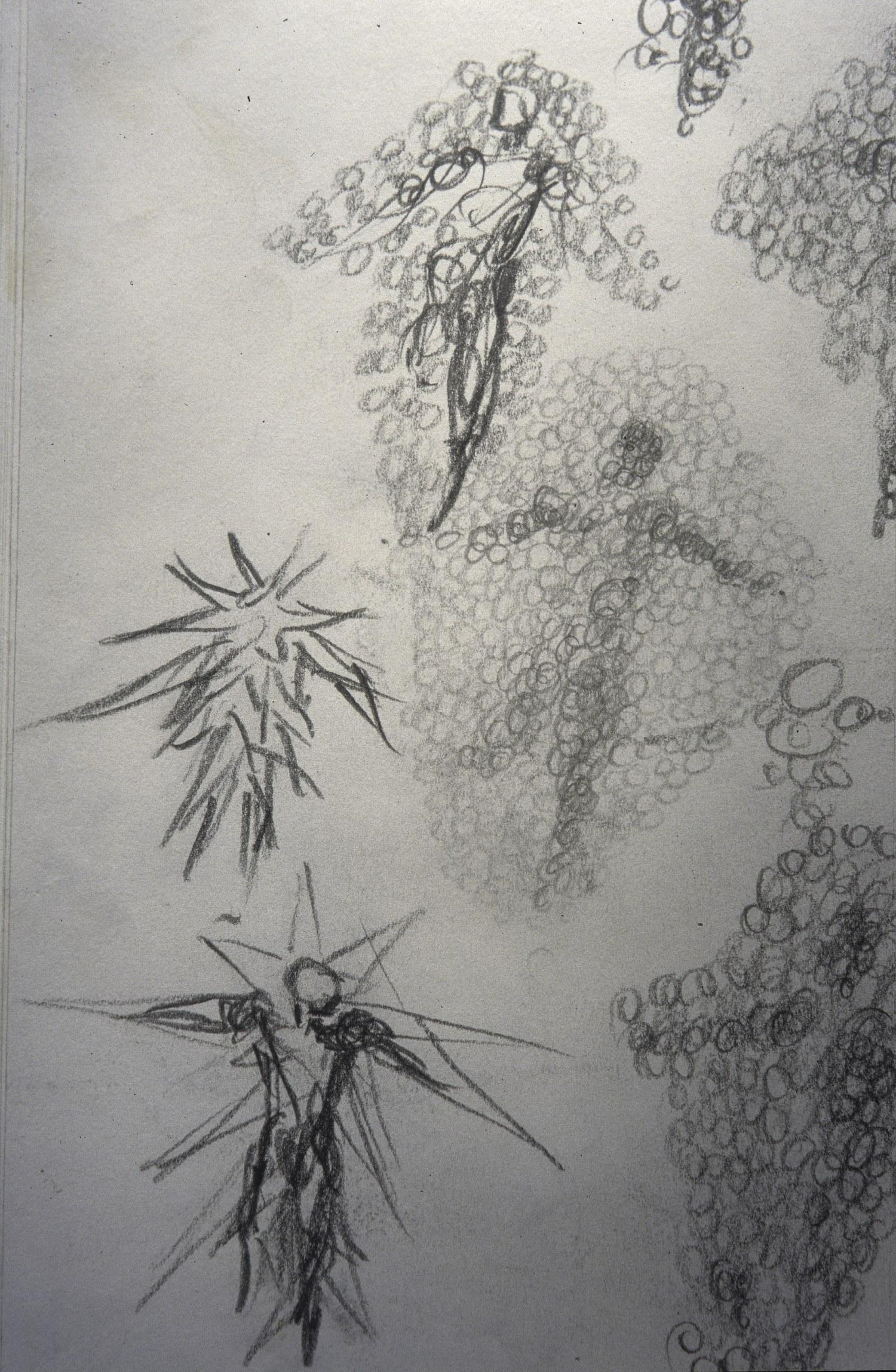drawing3-Exposure-1500.jpg